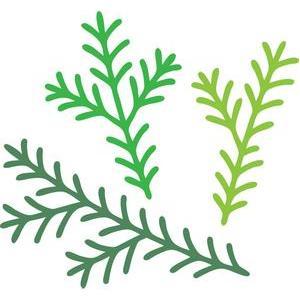 silhouette design store view design 105910 christmas tree branches - Christmas Tree Branches