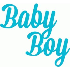 Silhouette Design Store View Design 44058 Baby Boy Script