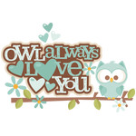 owl always love you title