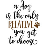 a dog is the only relative phrase
