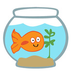 class pet - gold fish