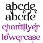 snf chantillyer lowercase
