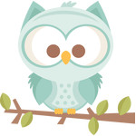boy owl on branch