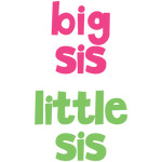 baby t-shirt set: big sis little sis