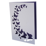 butterfly spray card