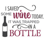i saved some wine today phrase