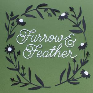 Furrow &
