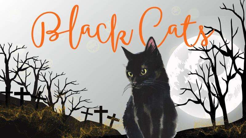 Image for Black Cats Bundle