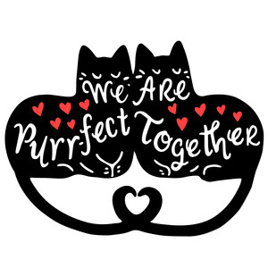 we are purr-fect together valentines cats