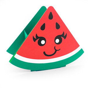 cute watermelon box