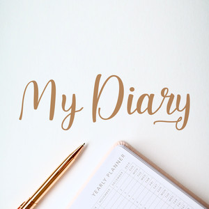 my diary font