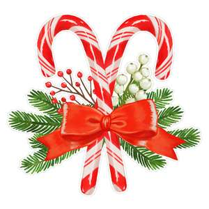 candy canes with a bow and fir sprigs