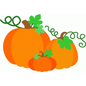 pumpkin group