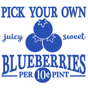 pick your own blueberries sign