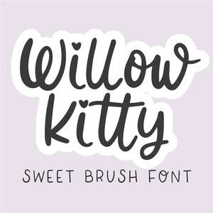 dtc willow kitty