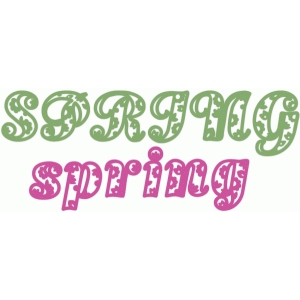 spring paisley text
