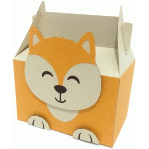 cute fox box