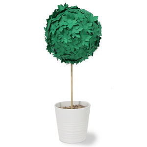 succulent tall topiary