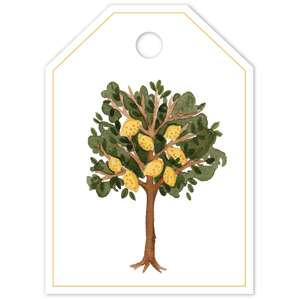 lemon tree tag