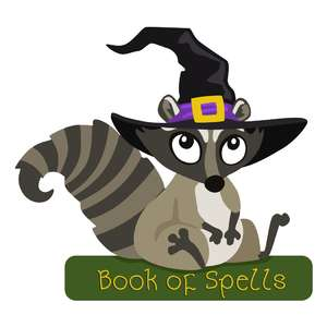 raccoon in witch hat