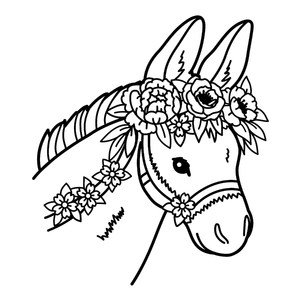 donkey with flower crown