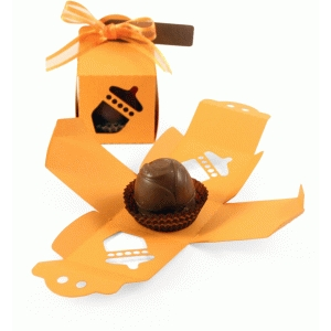 acorn choc box with place card tag
