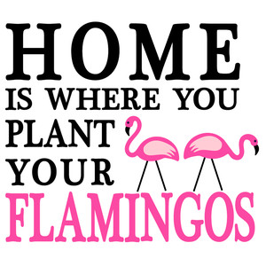home plant flamingos