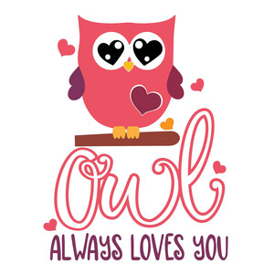 owl always loves you