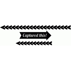 fancy pants designs 'captured this' arrow border set