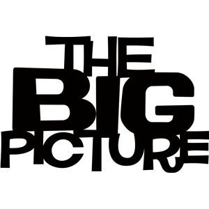 'the big picture' phrase