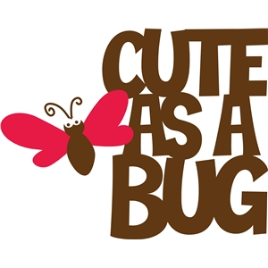 'cute as a bug' phrase