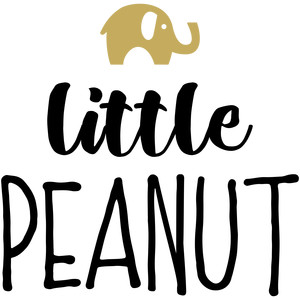 baby t-shirt: little peanut