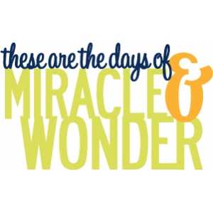 phrase: miracle & wonder