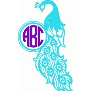 beautiful peacock monogram