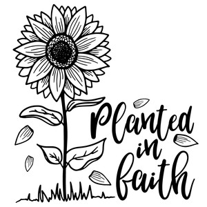 planted in faith sunflower quote
