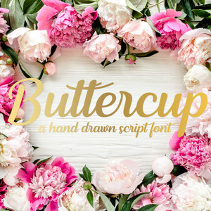 silhouette buttercup font