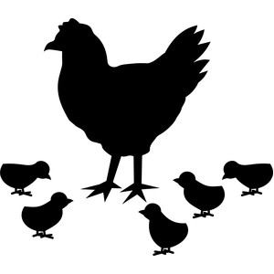 chicken with chicks silhouette