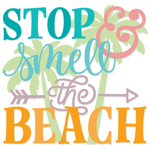 stop & smell the beach