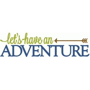 let's have an adventure - vinyl