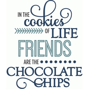 cookies of life friends chocolate chips - phrase