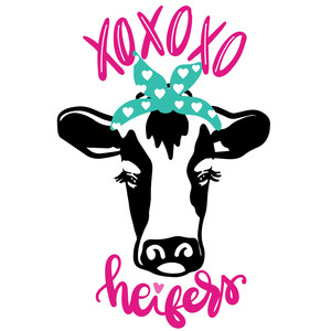 xoxo heifers