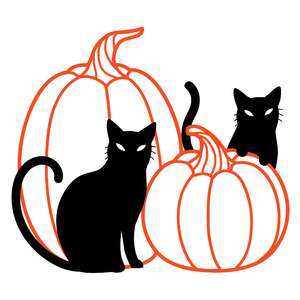 pumpkins and black cats