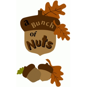 bunch of nuts title piece