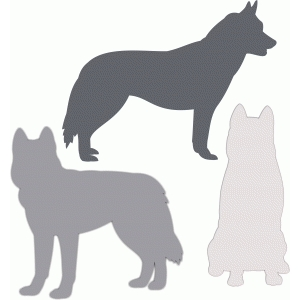 husky siberian dog set