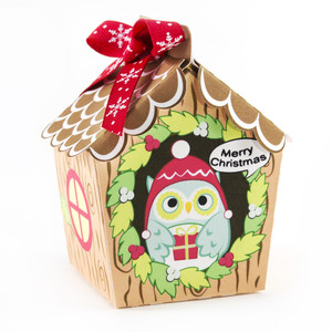 christmas teal owl house box