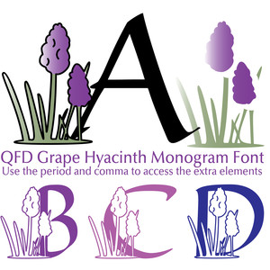 qfd grape hyacinth monogram font