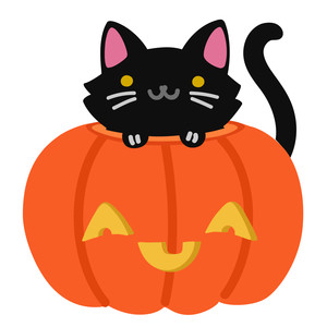kawaii black cat in pumpkin