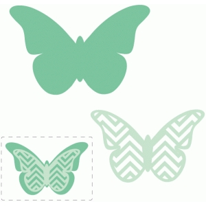 chevron layered butterfly