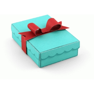 gift card holder box with bow
