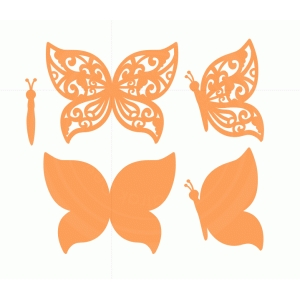 orange  butterflies set